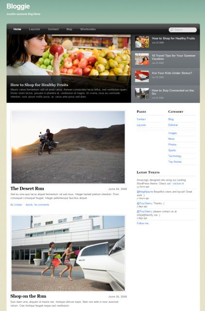 Bloggie WordPress blog theme - Themify