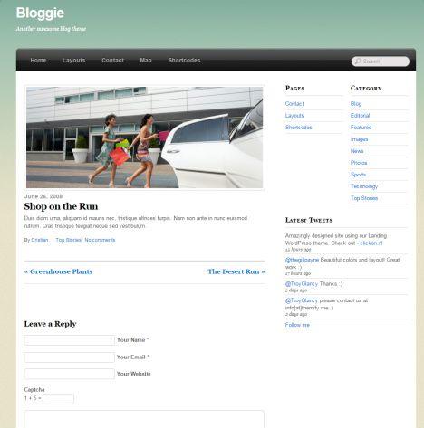 Post Bloggie Theme - Themify