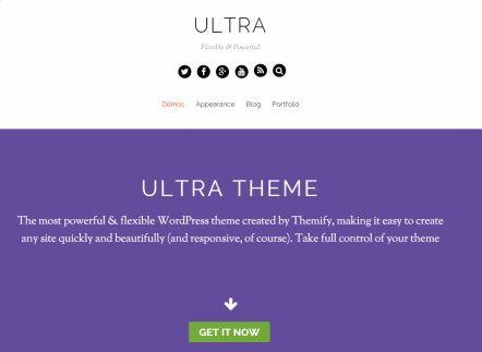 Ultra Flexible WordPress Theme : Themify Review