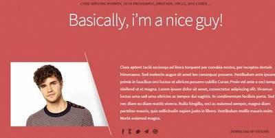 Intro Section - Freelancer ThemeFuse