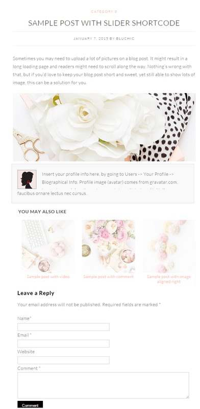 Post Features - Olivie Theme