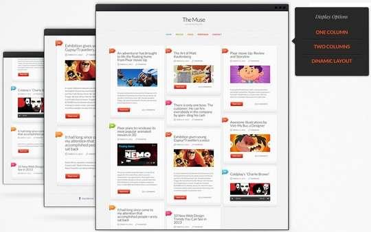 Display Options - ThemeFuse Muse WordPress Theme