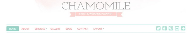 Header menu logo social icon - Chamomile