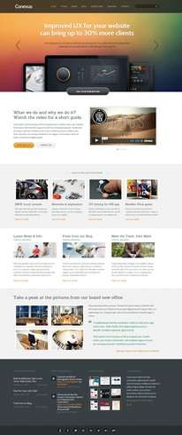 Conexus WordPress Theme Demo - ThemeFuse
