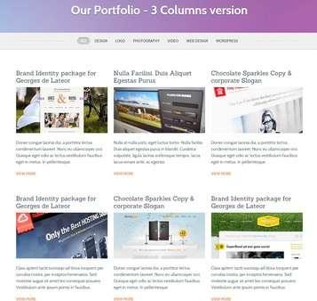 Portfolio Page - ThemeFuse Conexus