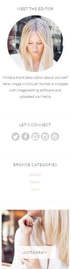 Widgets Rachel BluChic Responsive Blog Template