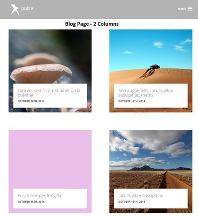 Blog Page Pulse WordPress Theme Demo
