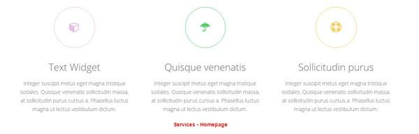 Featured Services on Homepage - Widget Blocks