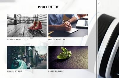 Portfolio Soho business template