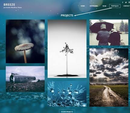 Projects Portfolio Page – Breeze JetPack Galleries
