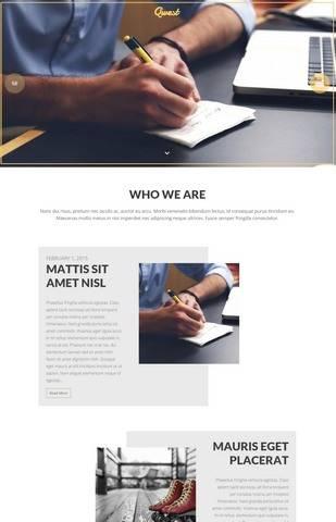 Viva Themes Qwest : Portfolio WordPress Theme
