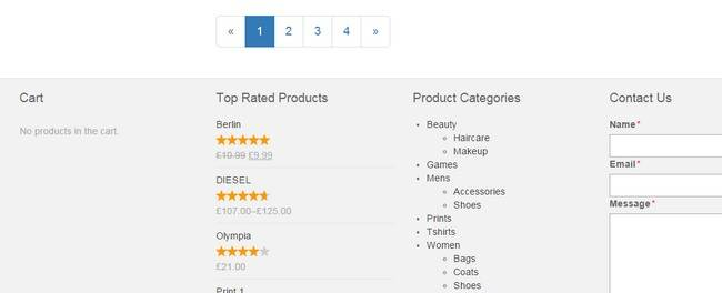 Footer Widgets - Products Bizz Store
