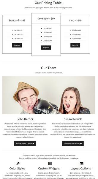 Homepage Featrured Sections - Company Business WordPress Theme