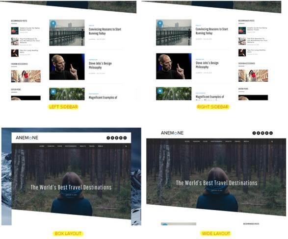 Homepage and Sidebar layouts - Anemone DesignOrbital