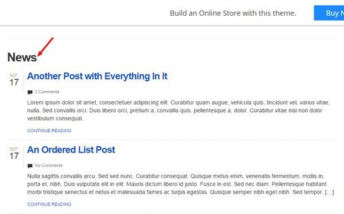 News Blog Page - Simple Store Bizz Themes