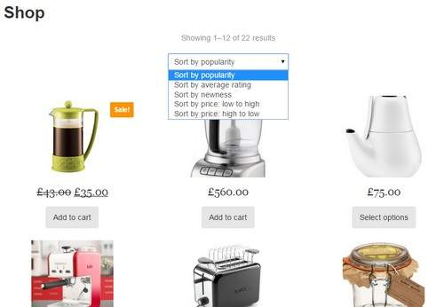 Products Shop Page - Simple Store WooCommerce Theme
