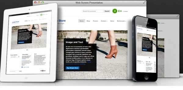 BizzThemes Simple Store : eCommerce WordPress Theme