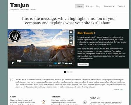 Tanjun : BizzThemes WordPress Business Theme