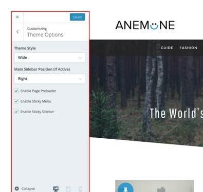Theme Options - Anemone DesignOrbital customizer options panel