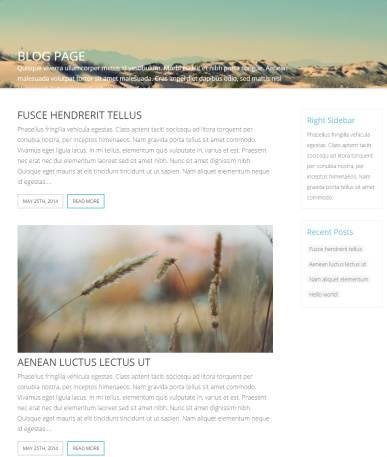Blog Page - Indigo Multi-purpose theme