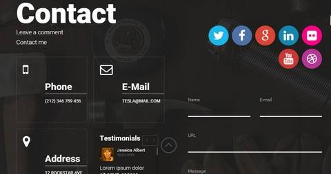 Contact Page - Socail widgets - Contact form - Text box