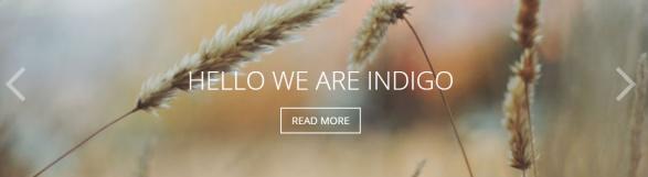 Featured Slider - Indigo