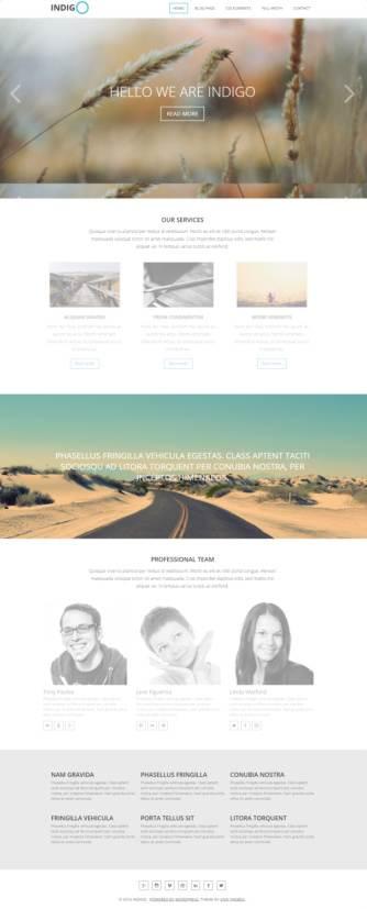 Indigo Review - Viva Themes Multi-purpose Business WordPress Theme