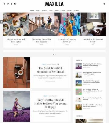 DesignOrbital Maxilla – Magazine WordPress Theme