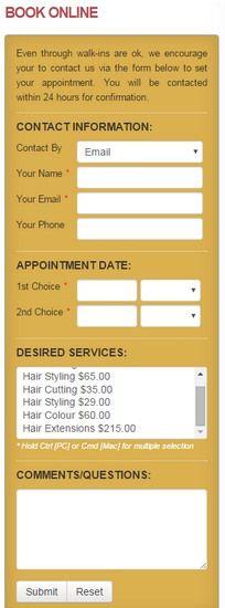 Online Booking Form - Hair Care Salon WordPress theme - BizzThemes