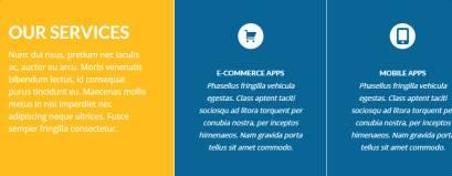Services - Sol Viva Themes