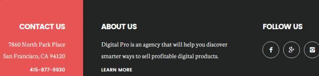 Social widget - Footer Digital Pro