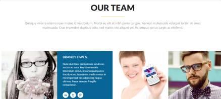 Team Section - Sol Business WordPress Theme