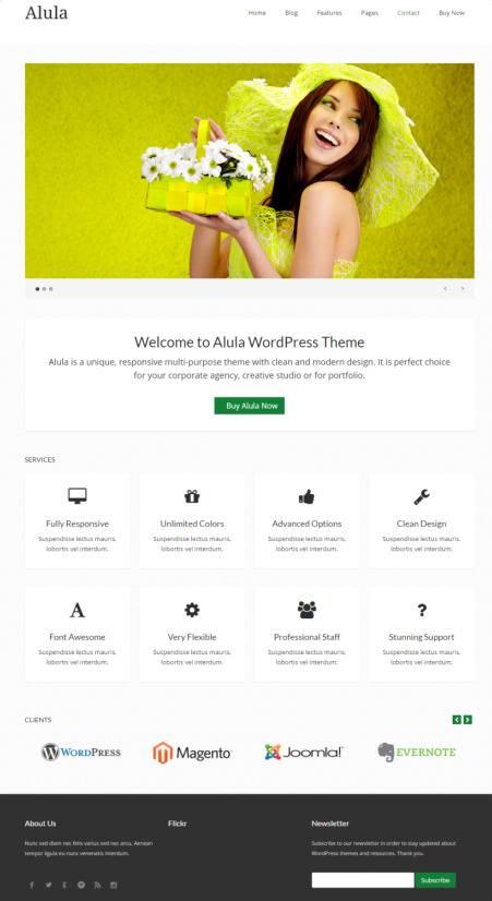 Alula Business WordPress Theme – DesignOrbital