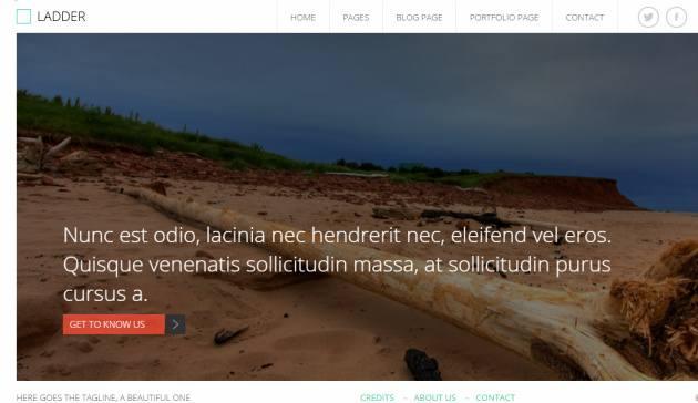 Ladder Viva Themes : Business Portfolio WordPress Theme