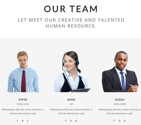Our Team - Farad WordPress Theme