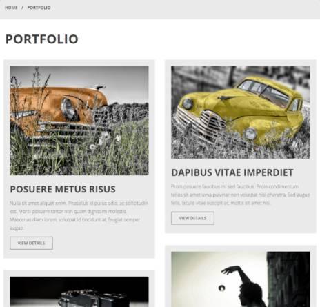 Portfolio Page - Kimbo Theme
