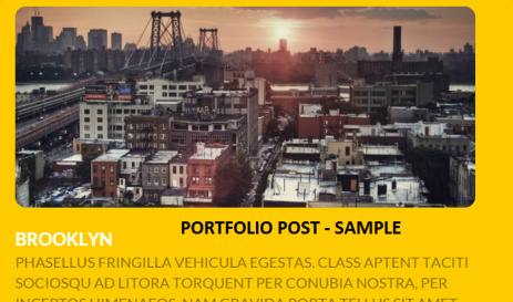 Portfolio Post Sample Demo Previwe - Viva Themes