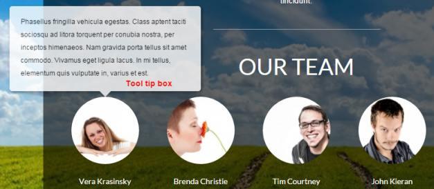 Tool tip box - Ecolife