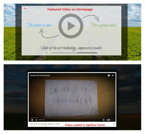 Video embed with iFrame support - Ecolife