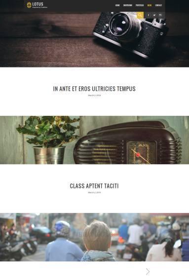 Blog – Lotus Viva Themes