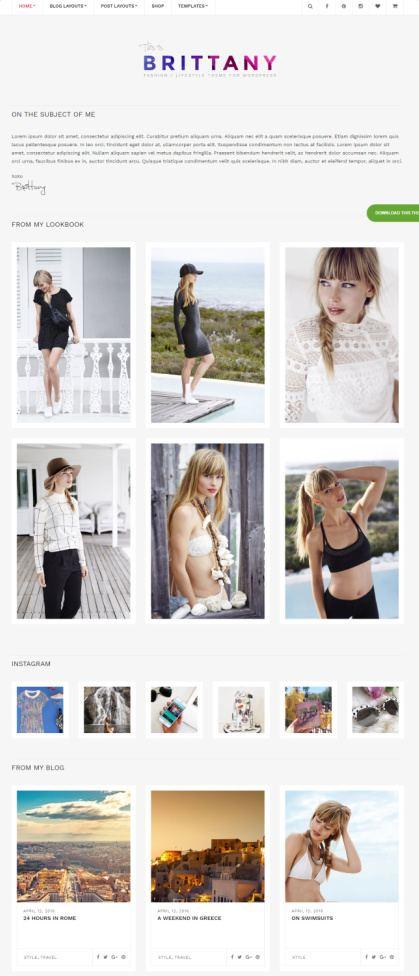 CSSIgniter Brittany : WordPress Blog Theme