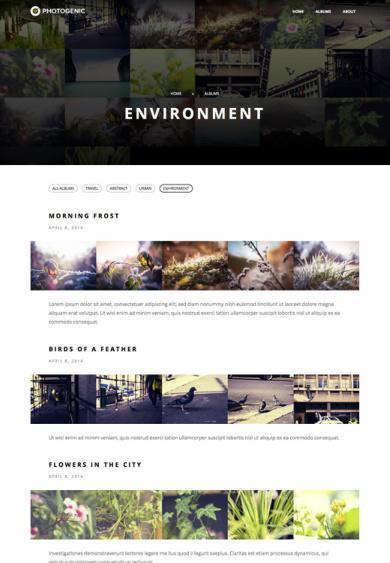Photogenic Review - Obox ThemeForest | GOOD ?