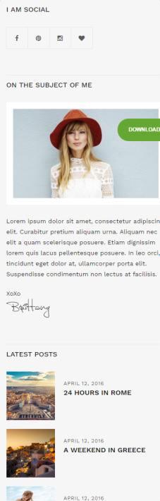 Sidebar Widgets - Brittany