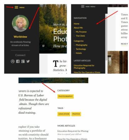 Sidebar Widgets - Worldview