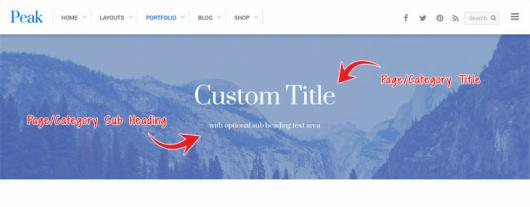 Custom Page Title banner