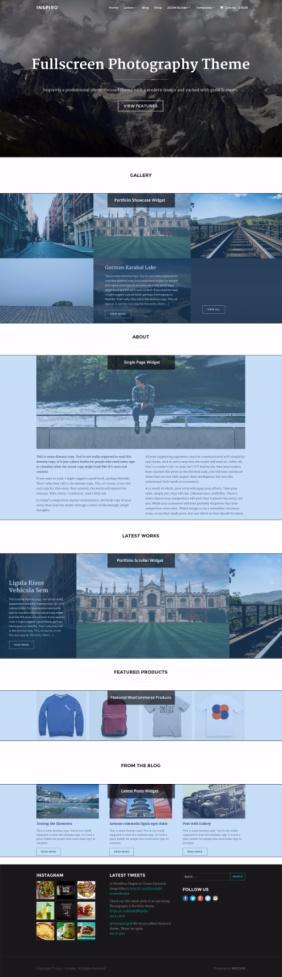 WPZOOM Inspiro Review : Portfolio & Photography Theme