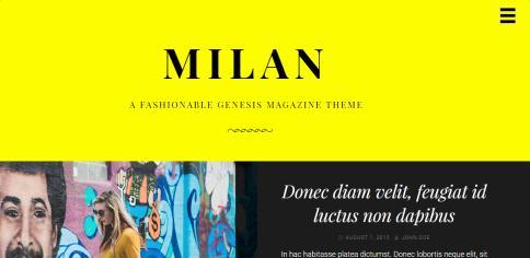 Milan Pro - Custom Header Options