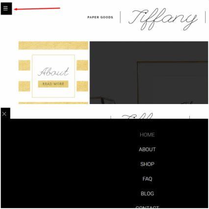 Advanced Menu - Tiffany