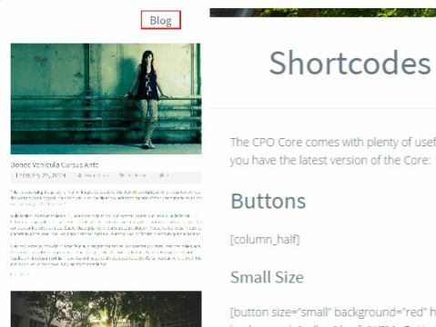 Blog Page - Shortcodes - CPOThemes