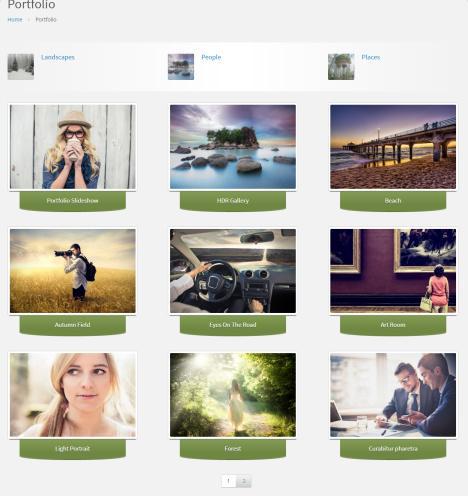 Portfolio Page - Practical CPOThemes
